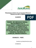 Proyecto Quinua- Distrito Chavin de Pariarca.