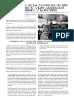 15-M - Comunicado metodología asambleas