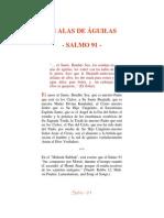 EN ALAS DE ÁGUILAS SALMO 91
