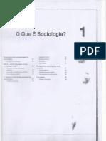 o q é sociologia