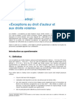 HADOPI Questionnaire Chantier Exceptions