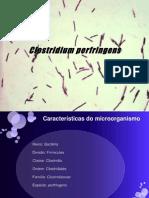 Clostridium Perfringens QA (1)