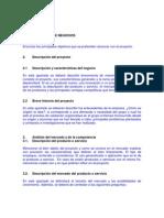 Estructura - Plan de Negocios. Copy