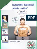 Mozgásszegény Életmód a túlsúly mellett