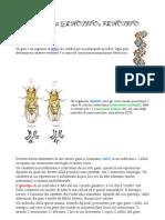 Definizione Di Genotipo e Fenotipo