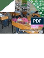 PTEM 2012 Reorganización Curricular (Preliminar)-MARLEN-jromo05.com