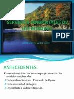 Servicios Ambientales de Los Bosques.
