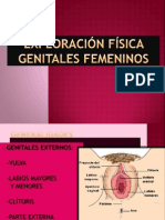 Exploracion Aparato Reproductor Femenino