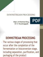 Down-Stream Process