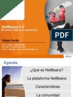Netbeans65es Cl