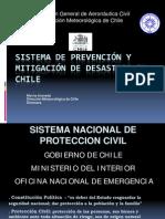 Ms. Mirna Araneda (Chile)