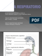 aparatorespiratorio-100827221215-phpapp01