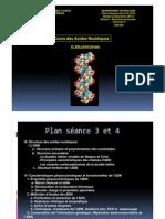 Cours Des Acides Nucleiques