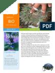 biology stars fishtrom