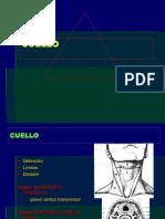 22- CUELLO-1