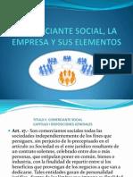 Comerciante Social, La Empresa y Sus Elementos