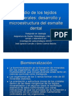 Estructura_esmalte