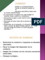 PATRÓN DE ZUMBIDO