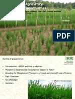 Phosphorus in agriculture