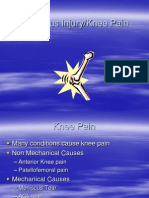 Meniscus Knee Pain