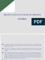 Delincuencia juvenil benjita1