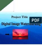 Digital Image Watermarking