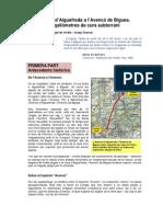 Avenco PDF