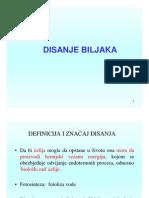 Fiziologija 4 DISANJE BILJAKA [Compatibility Mode].pdf
