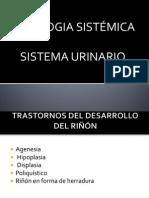 urinario