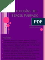 Patologías del Tercer Párpado2