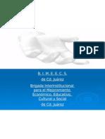 bimeecs presentation2