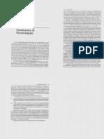 Fundamentos Da Psicopedagogia - 2