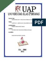 Articulo 2 - Constitucion Politica Del Peru