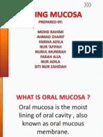 Lining Mucosa