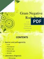 Gram Negative Rods Part 1