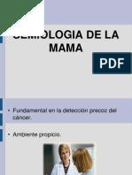 Semiologia de La Mama