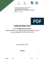 Ghid de Practica - Master ASE 2012