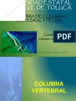 Clase 2 g. Columna V.
