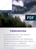 Gimnospermas- Biologia