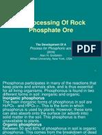 Bioleach Phosphate Ore