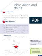 Topic 7 - Nucleic acids and proteins