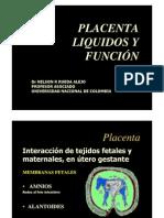 Placenta Liquidos y Funcion