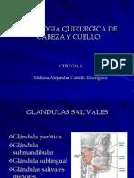 Patologia Quirurgica de Cabeza y Cuello