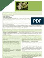 FICHA de REGISTRO Cultivs Agroindustriales