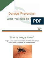 Dengue Fever Sg[1]