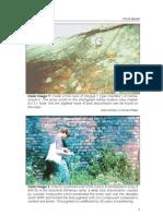 Rudolf, Germar - The Rudolf Report - Colour Section (en, 2003, 4 S., Text)