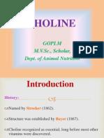 Choline Nutrition