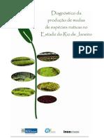Diagnostico Mudas VF no estado do Rio de Janeiro