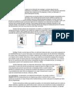 Neumática - Componentes Básicos