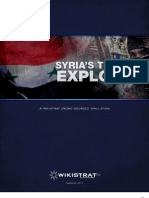 Syria's turmoil explored - Executive summary